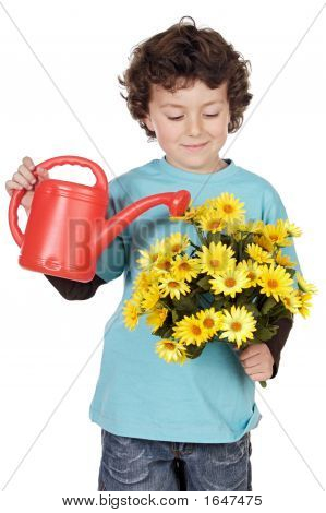 Adorable Boy With Flowers