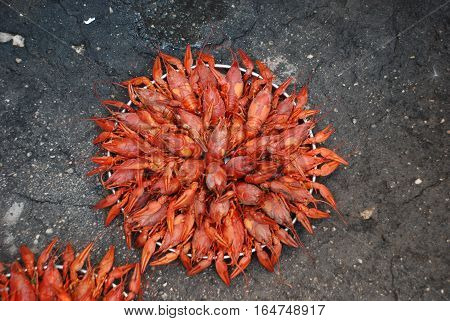 boiled crawfish are on the tray and on the plate