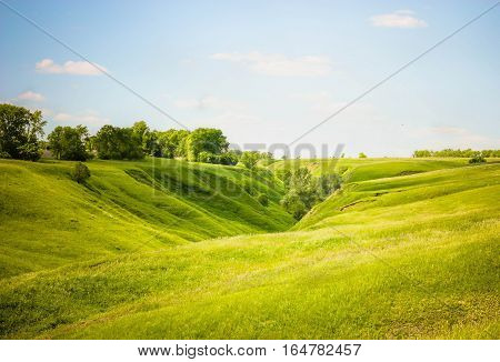 Meadow with ravine on a sunny day