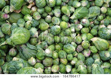 Fresh loose brussel sprouts viewed from above