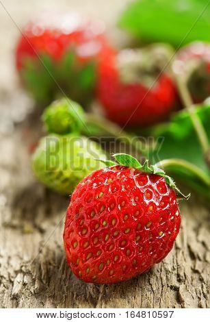 Fresh strawberry macro shot. Healthy natural food.