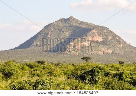 African savannah with a green hill in East Tsavo Park in Kenya