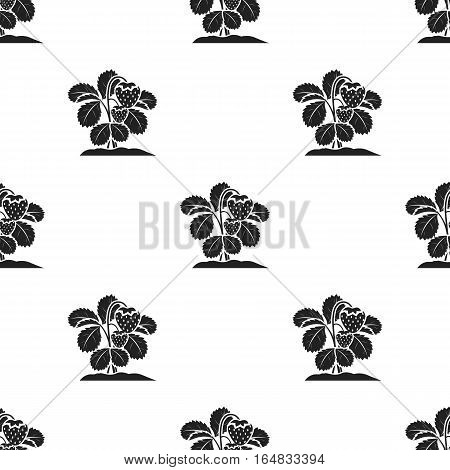Strawberry icon in black style isolated on white background. Plant pattern vector illustration.