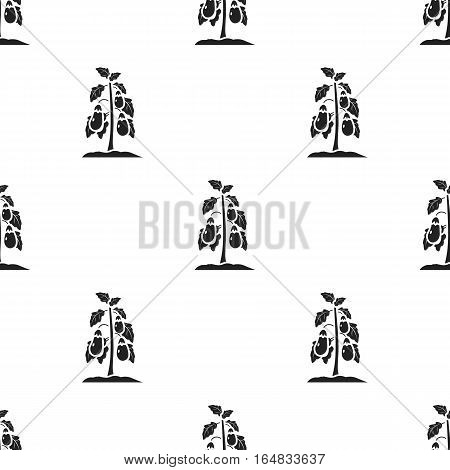 Eggplant icon in black style isolated on white background. Plant pattern vector illustration.