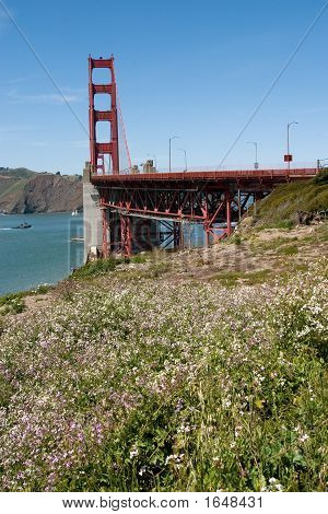Golden Gate Bridge With White Flowers