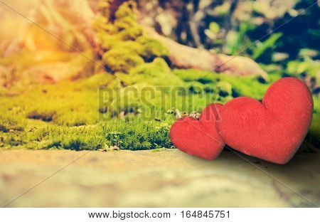 Love Concept For Valentine's Day. Two Red Hearts On Rock Over Moss Background.