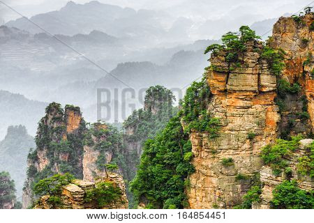 Scenic View Of Trees Growing On Steep Cliffs (avatar Rocks)