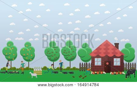Country house, planting vegetables concept vector illustration in flat style. Gardeners men tilling, digging, fertilizing soil with garden tools, watering flowers.