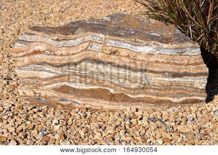 Large sandstone rock showing the sedimentary layers
