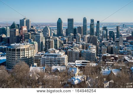 Montreal Skyline from Kondiaronk Belvedere / Mont-Royal in Winter ((2017)