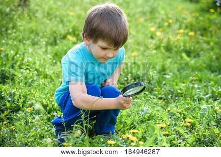 Young Boy Exploring Nature In A Meadow With Magnifying Glass