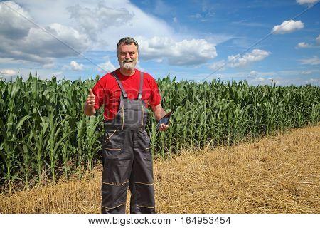 Farmer Or Agronomist In Green Corn Field