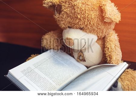 Toy Bear Reading An Interesting Book. Concept Of Baby Learning