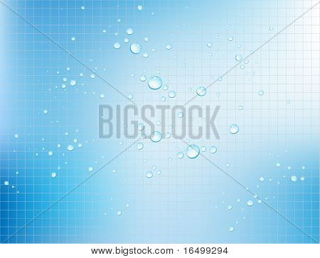 Vector water bubbles on textured background