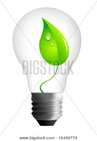 Vector Eco Concept