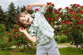 stock photo of clown rose  - Happy boy against of rose bushes - JPG