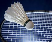 stock photo of game-cock  - Badminton racket and shuttlecock - JPG
