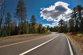 picture of grand canyon  - A sparkling cloud above highway in park near to the Grand Canyon in the USA