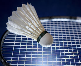 stock photo of game-cock  - Badminton racket and shuttlecock - JPG