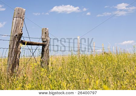 old fence runs through a field in rural Wyoming. Focus on leftmost post.