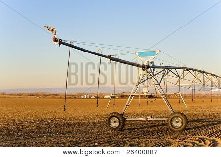 agriculture industry - modern automated irrigation sprinkler system in late sun, blue sky