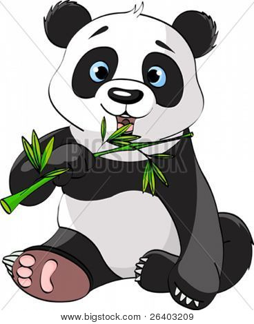 Baby Panda Sitting And Munching On Bamboo