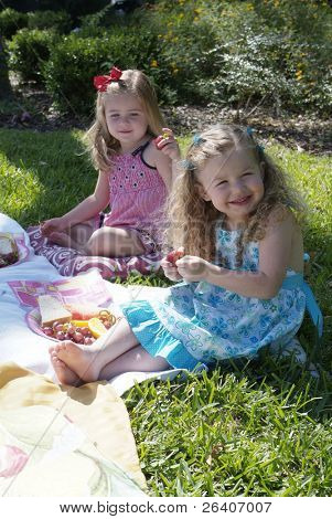 Girls at a summer picnic 03