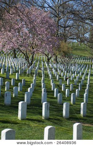 Arlington National Cemetery Washington DC travel series 70