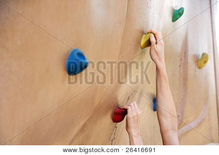 A person climbing a rock wall in the park