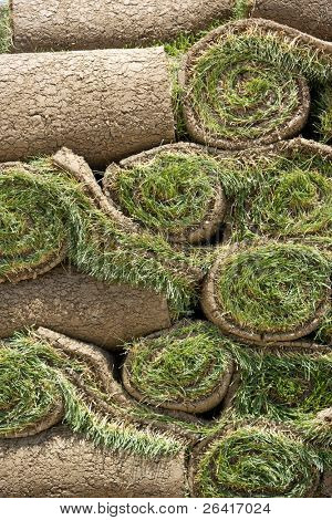 Rolls of new sod wait to be laid in place