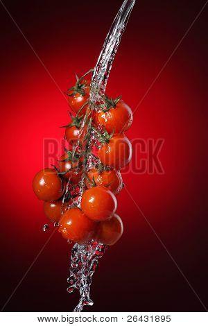 Cherry-Tomaten in Wasser Spritzen