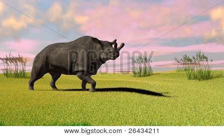 brontotherium in field