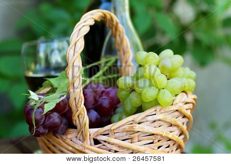 Bottles of red and white wine with grapes, outdoor natural light