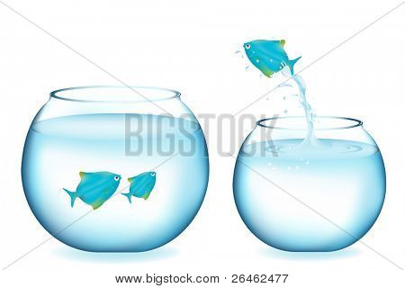 Blue Fish Jumping To Other Aquarium With Two Fishes, Isolated On White