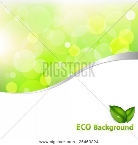 Green Eco Background With Leaves And Text, Vector Illustration