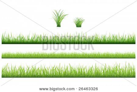3 backgrounds of green grass and 2 tufts of grass