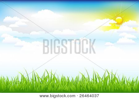Beautiful Landscape With Green Grass And Blue Sky, Clouds And Sun