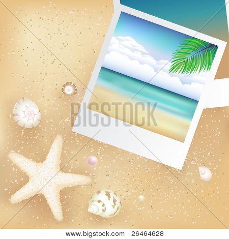 2 Blank Photos With Starfish, Cockleshells And Sand
