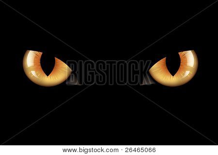 Wild Cat Eyes, On Black Background, Vector Illustration