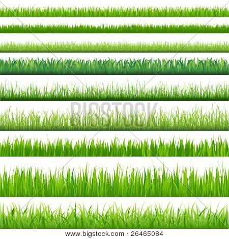 9 Backgrounds Of Green Grass, Isolated On White Background, Vector Illustration