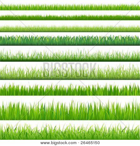 9 Fondos de hierba verde, aislado sobre fondo blanco