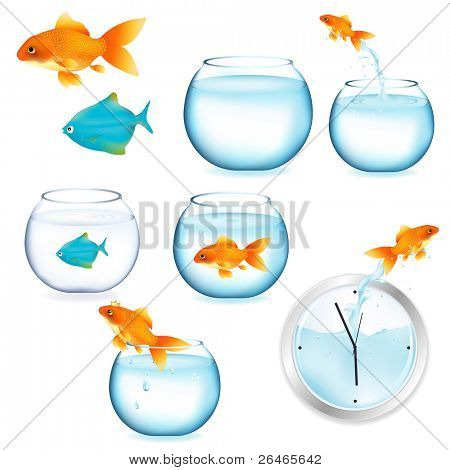Goldfish And Aquariums, Isolated On White Background, Vector Illustration