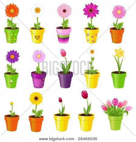Spring Flowers In Pots, Isolated On White Background, Vector Illustration