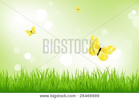 Fondo de naturaleza, hierba verde y amarillas mariposas, Vector Illustration