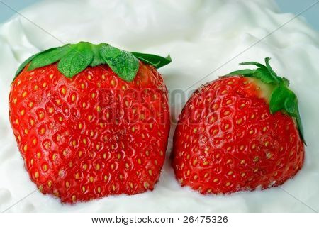 Strawberries with clotted whipped cream
