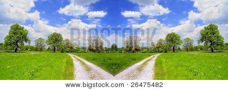 Beautiful summer landscape and cross road - dirt road