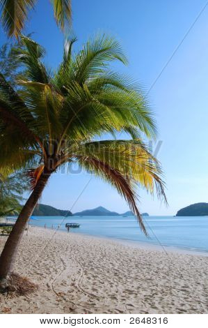 Beauitiful Tropical Beach Of  Langkawi