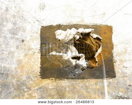 Abstract yellow still life with dried leaf in grunge background
