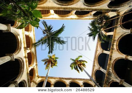 Courtyard in colonial building interior with tropical vegetation in Old Havana