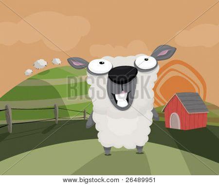 A sheep in a field.